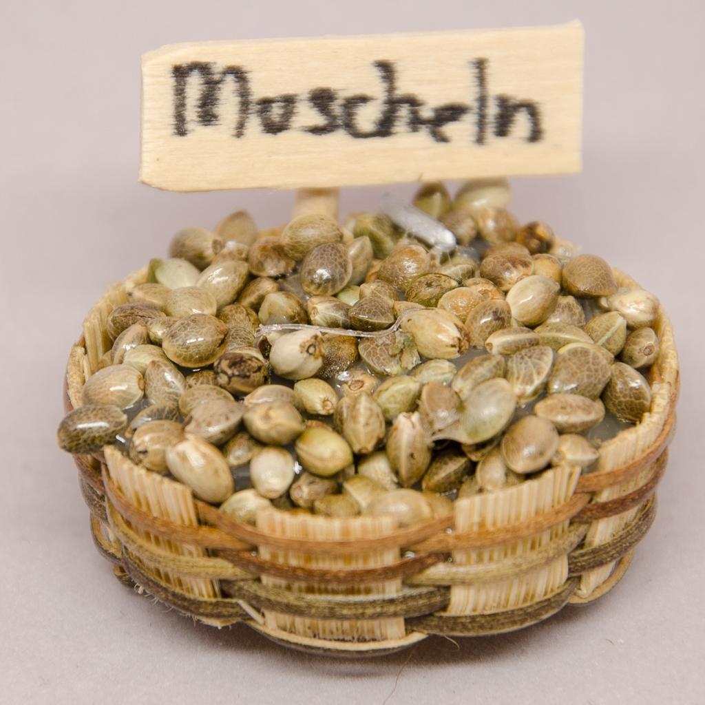 Körbchen mit Muscheln