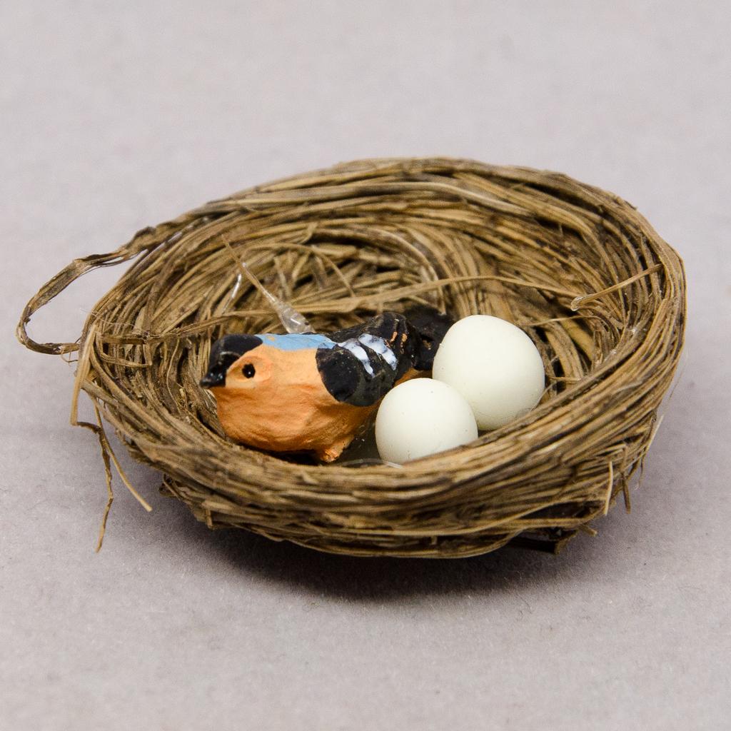 Nest mit Vogel und Eier