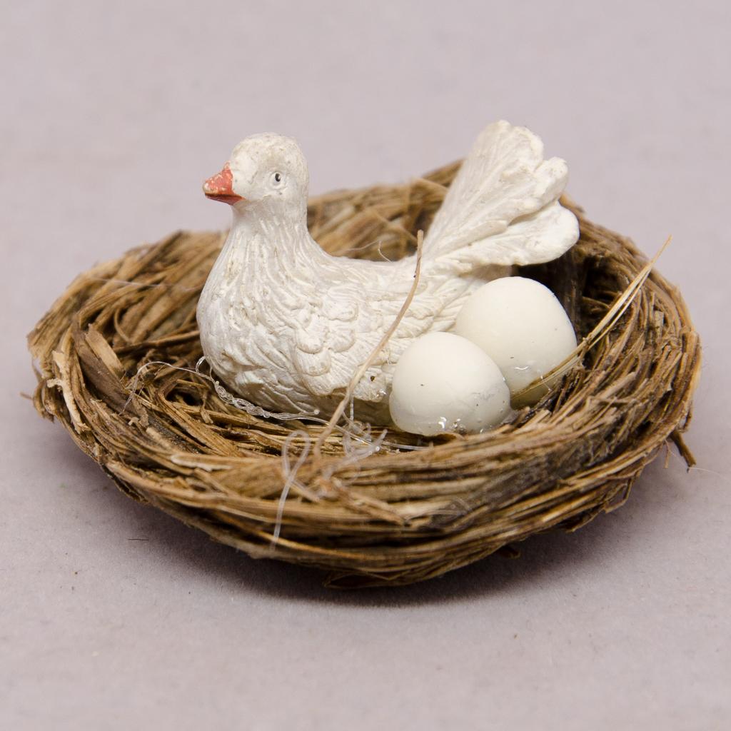 Nest mit Taube und Eier